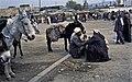Marokko1982-140 hg.jpg