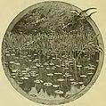 Maupassant - Sur l'eau, 1888 (page 162 crop).jpg