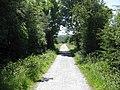 Mawddach cycle trail - geograph.org.uk - 1456102.jpg