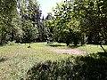 Meadow in Karkali Strict Nature Reserve.jpg