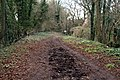 Meon Valley Trail - geograph.org.uk - 830524.jpg
