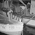 Met sardines gevulde visnetten worden binnen boord gehaald, Bestanddeelnr 255-2882.jpg