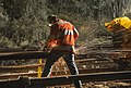 Metro-North Track Repair (11200079265).jpg