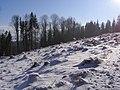 Metylovická pahorkatina, Na Magoni, vrchol, paseka 01.jpg