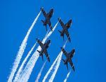 Midnight Hawks (31343241481).jpg