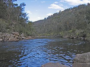 Mitchell River National Park (Victoria) - Image: Mitchell River 2