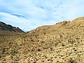 Mojave Desert, United States (Unsplash HKEIt lpuNw).jpg