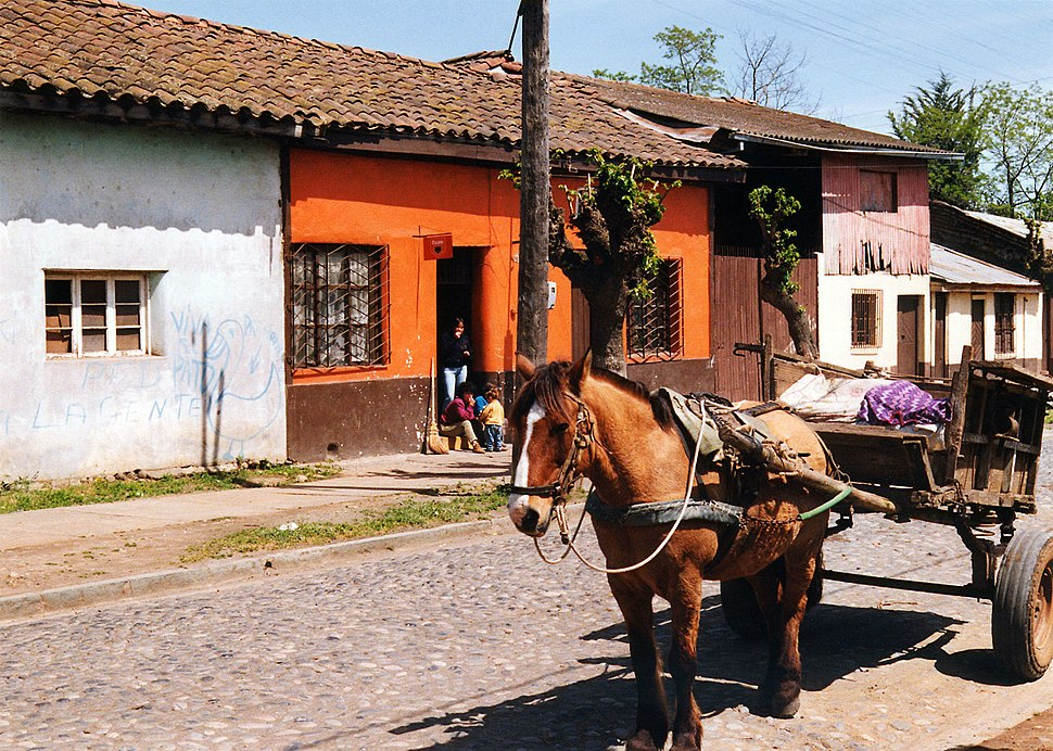 Molina Chile - outskirts with horse and trap1