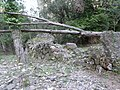 Molins de Balanyà - molí de més avall P1110978.JPG
