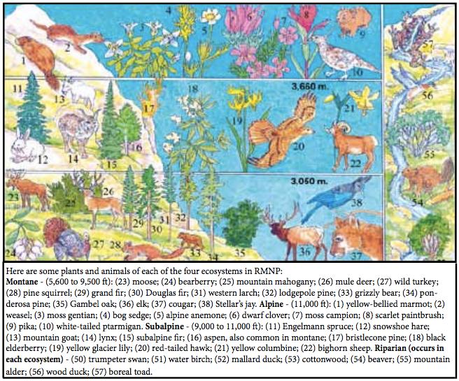 File:Montane, subalpine, alpine and riparian ecosystems of RMNP.tif