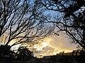 Monterey Park, CA, USA - panoramio (198).jpg