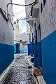 Morocco - Rabat (32079861072).jpg