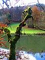 Moss - panoramio (4).jpg