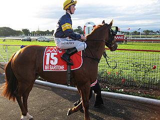 Sebastian Murphy Australian jockey