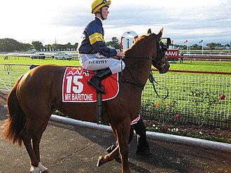 Stradbroke Handicap - Mr Baritone - 2008 winner