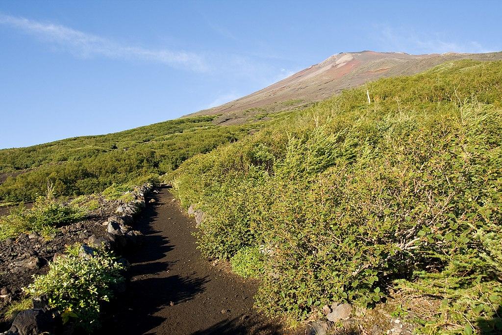 Mt.Fuji from Subashiri Trail 04
