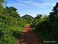 Mulapadu forest near Vijayawada.jpg