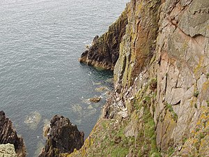 Rhins of Galloway - Cliffs at the Mull of Galloway