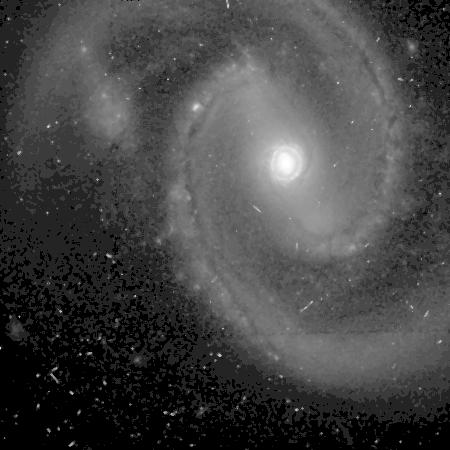 NGC 1019 -HST05479 3f-606-asinh