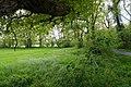 NSG Hansdorfer Brook (16) DxO.jpg