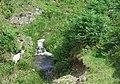 Nant y Rhiw, Ceredigion - geograph.org.uk - 513591.jpg