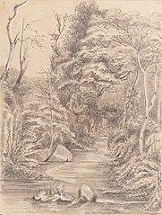 Napau(?) - Petropolis near the Baron de Maua's House - March 6th 1855