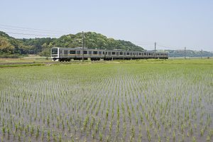 Narita Line - A 209 series EMU on the Narita Line service in May 2017