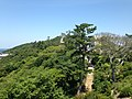 Naruto Park from Ochaen Observation Deck.jpg