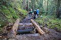 National Public Lands Day 2014 at Mount Rainier National Park (033), Narada.jpg