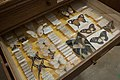 Naturalis Biodiversity Center - Museum - Collection tower 03 - Drawer with large butterflies and color images, including Papilio Dardanus Brown and Papilio Agamemnon.jpg