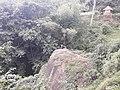 Nature20170629 123621.jpg