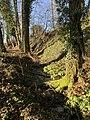 Nature (passage d'un ruisseau) à proximité du tombeau de Georges Girerd.jpg