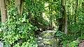 Naturschutzgebiet Ilmwand Ilm Flussbett I.jpg