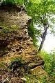 Naturschutzgebiet Saupark - Kleiner Deister - Felsformation der oberen Jura (Korallenoolith) (15).jpg