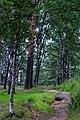 Near prospect Engelsa - panoramio.jpg