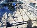 Necropoli tardoromana e protobizantina (Milazzo) 08 09 2019 04.jpg