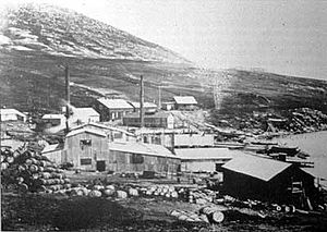 New Island - New Whaling Company's whaling station on New Island, operated from 1908 to 1916.