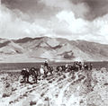 Newar caravan in tibet.jpg