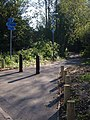 Newly-surfaced path, Riverside Valley Park, Exeter - geograph.org.uk - 271745.jpg