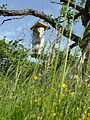 Nichoir à abeilles sauvages dans un verger.jpg