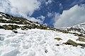 Nieve - panoramio (13).jpg
