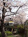 Nikaryo Shukugawara 06a7072s.jpg