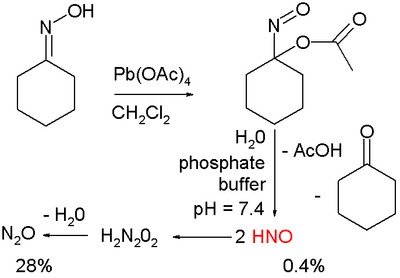 Nitrosocyclohexyl acetate