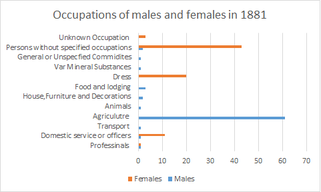 Occupation of Males and Females in 1881 Layer Breton