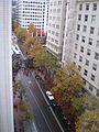 Occupy Portland November 17 downtown.jpg