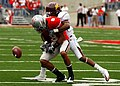 Ohio State free safety Aaron Grant catches a pass but drops the ball when tackled by Minnesota corner back Traye Simmons.jpg