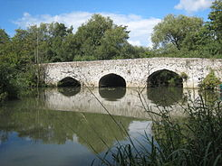 Old Culham Bridge - geograph.org.uk - 940811.jpg