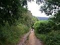 Old track, west of Edensor - geograph.org.uk - 908036.jpg