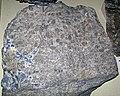 Oncolitic dolostone with galena (Bonneterre Dolomite, Upper Cambrian; St. Joseph's Lead Mine, Flat Rock, Missouri, USA) 3 (40704516154).jpg