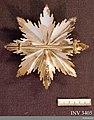 Order of the German Eagle AM.003405 (1).jpg